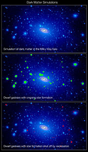 A swarm of dark matter around the Milky Way