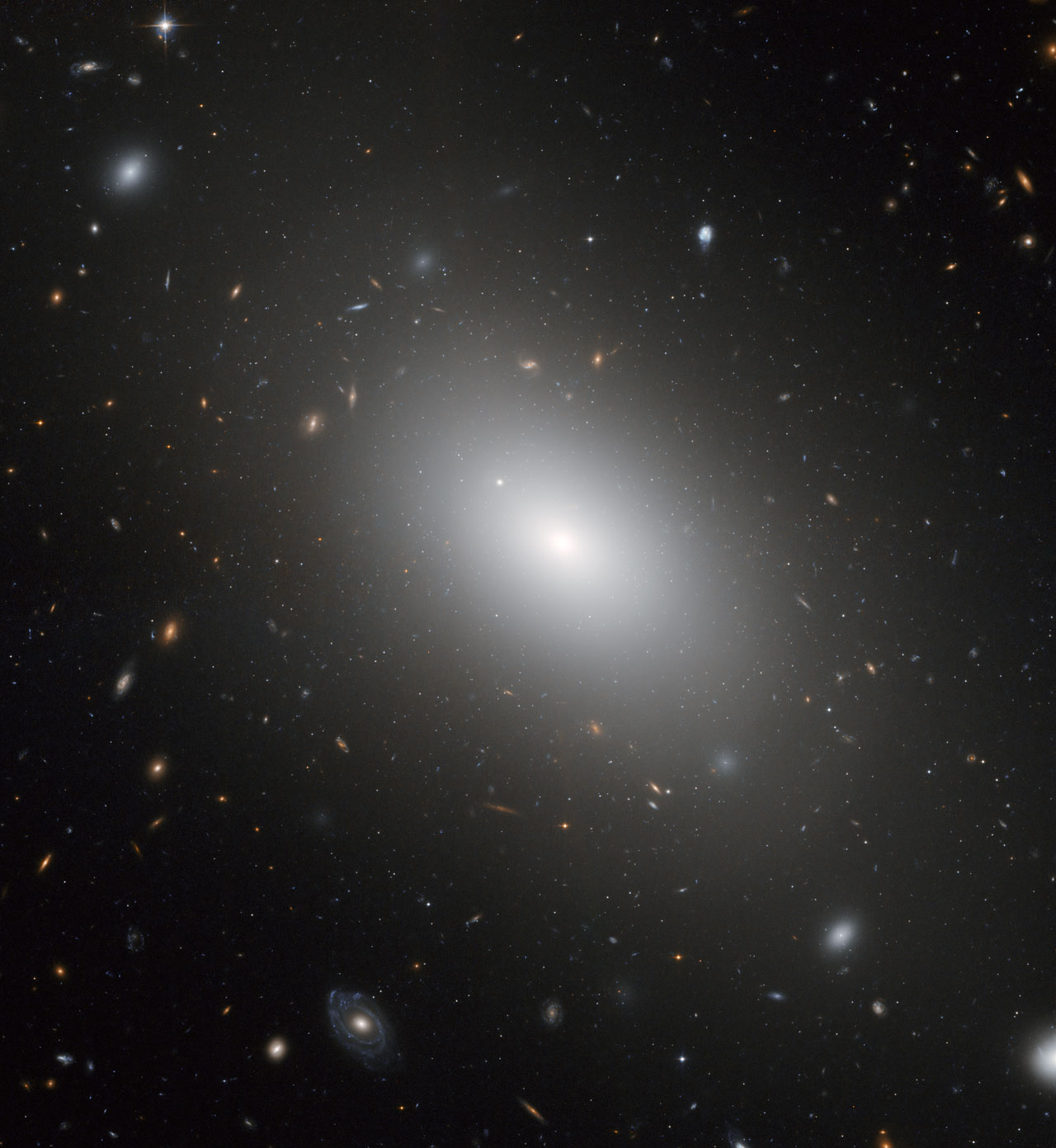 The Gargantuan Galaxy Ngc 1132 Esa Hubble