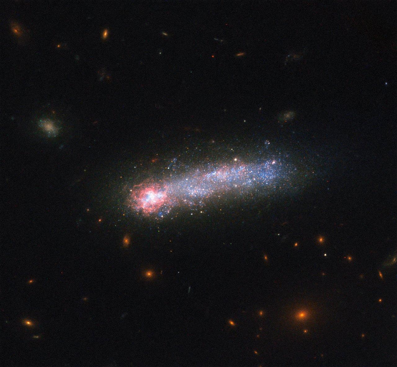 Galaktyka LEDA 36252