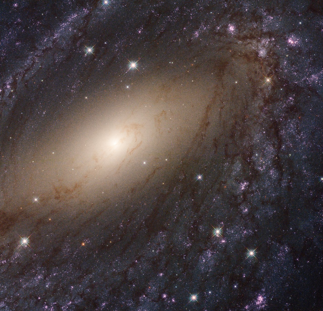 Photo Release: Hubble shows the local Universe in ultraviolet
