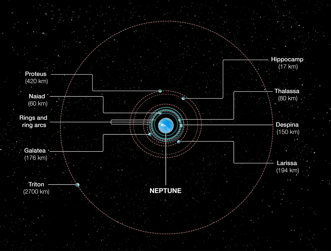Orbits of Neptune's inner moons