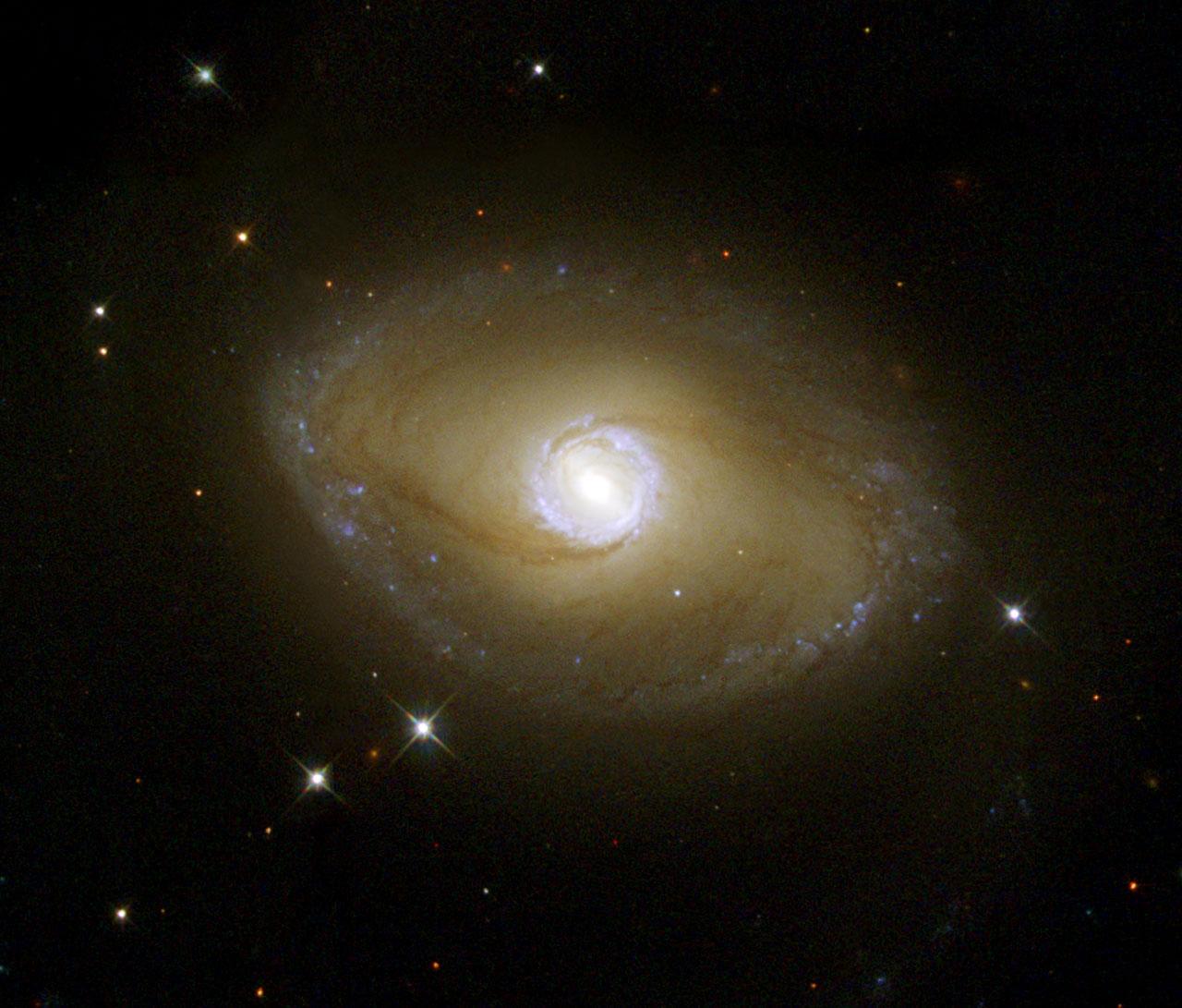 hubble reveals ultraviolet galactic ring esahubble
