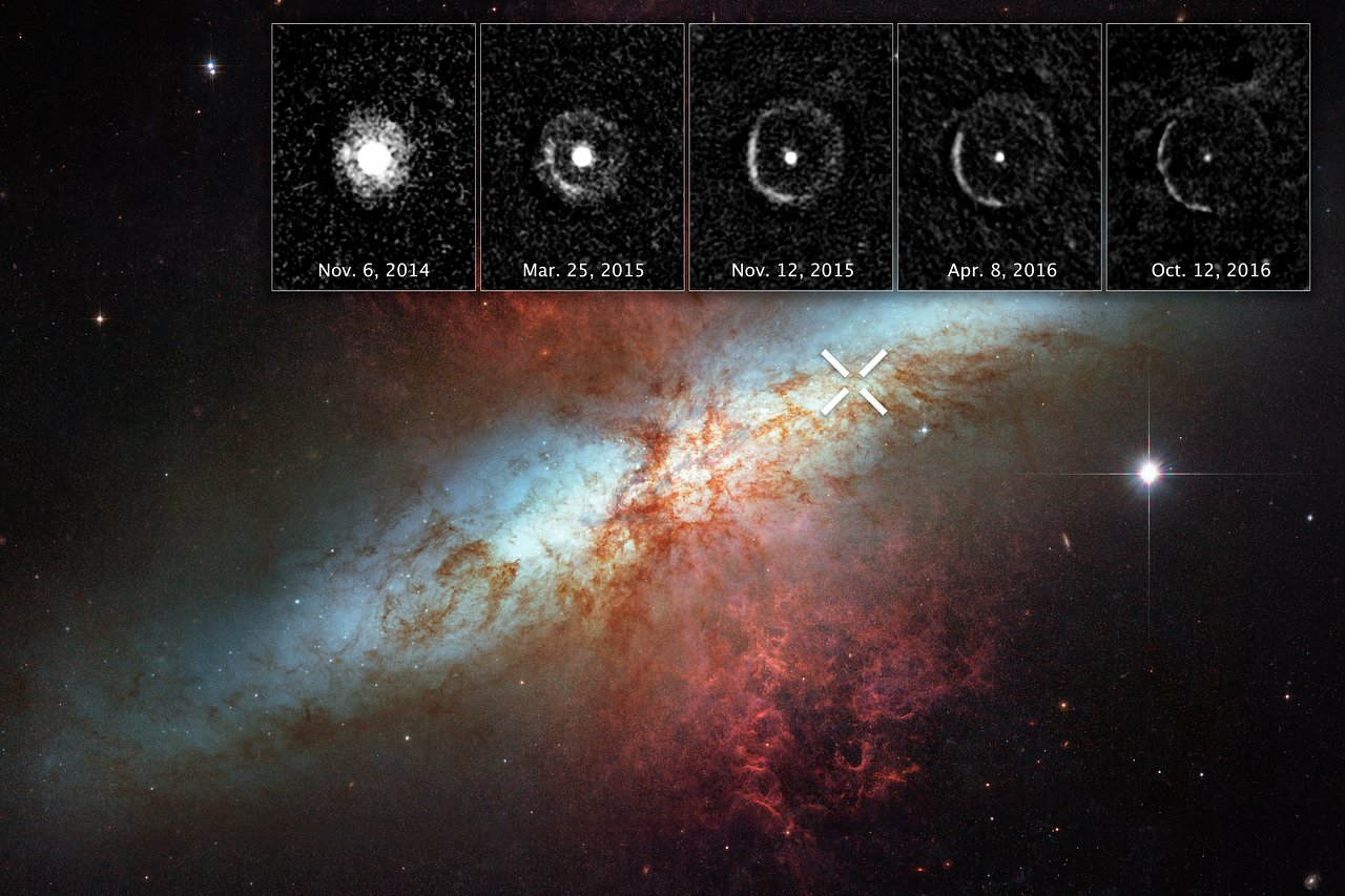 Light Echo around SN 2014J in M82