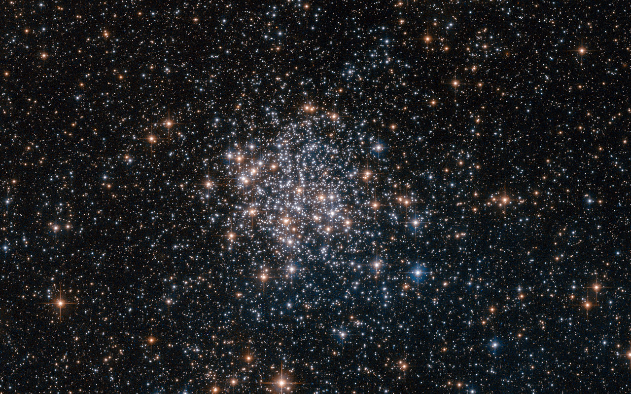 The stars of the Large Magellanic Cloud
