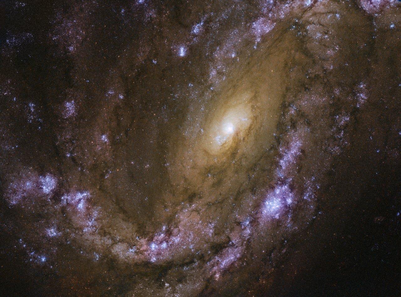 An explosive galaxy