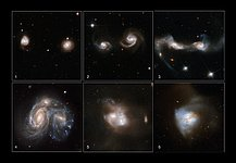 Galaxies Gone Wild!