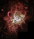 Firestorm of Star Birth Seen in a Local Galaxy