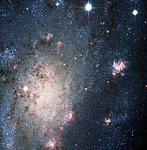 A Bright Supernova in the Nearby Galaxy NGC 2403
