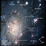 NGC 2403: Annotated Hubble View