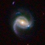 COSMOS Barred Spiral Galaxy 3127341