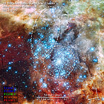 Compass and scale image of merging star clusters in 30 Doradus