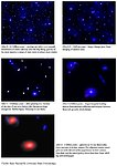 Poster on Galaxy Formation