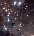 Stellar powerhouses in the Eagle Nebula