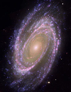 Hubble/GALEX/Spitzer Composite Image of M81