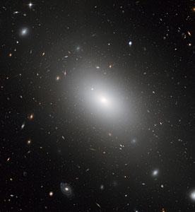 The gargantuan galaxy NGC 1132