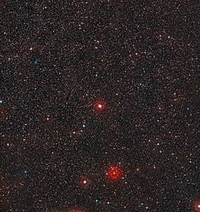Wide-field image of RS Puppis (ground-based image)