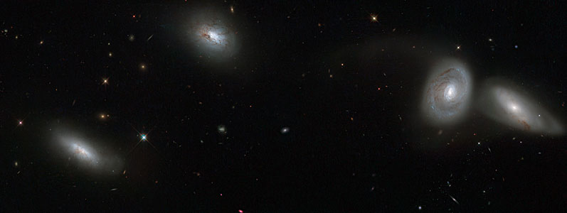 Hubble views bizarre cosmic quartet HCG 16