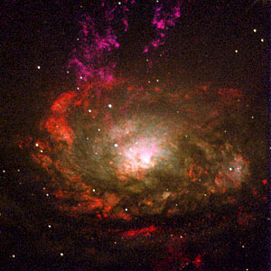 Active Galaxy Circinus