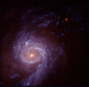 Spiral Galaxy NGC 3310