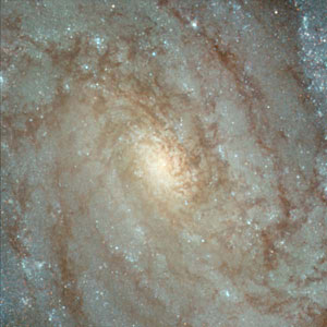 Details from ACS Image of NGC 3370: Center of Galaxy