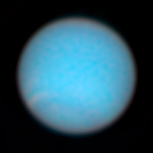 Neptune in Natural Colors