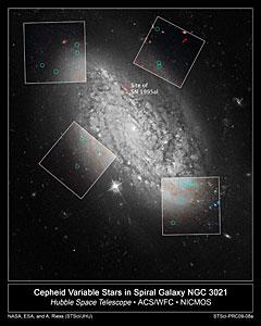 Cepheid variable stars in spiral galaxy NGC 3021