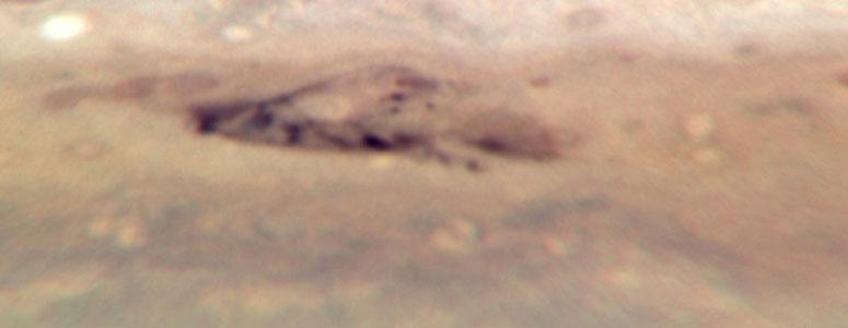 Jupiter: 3 August 2009