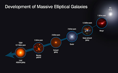 Development of massive elliptical galaxies