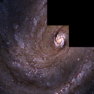 The Spiral Galaxy M 100
