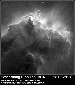 Evaporating Globules in M16