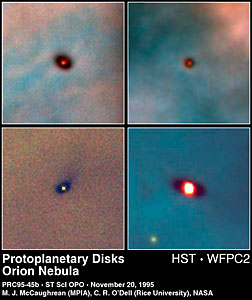 Protoplanetary Discs in the Orion Nebula