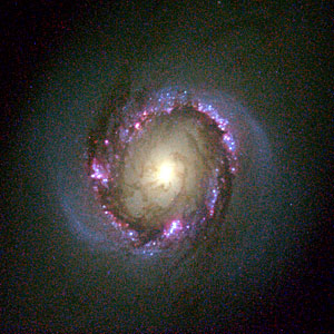 Galaxy NGC 4314 (Hubble View)