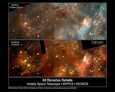 30 Doradus (WFPC2 and NICMOS)
