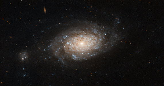 Hubble spots a busy barred spiral