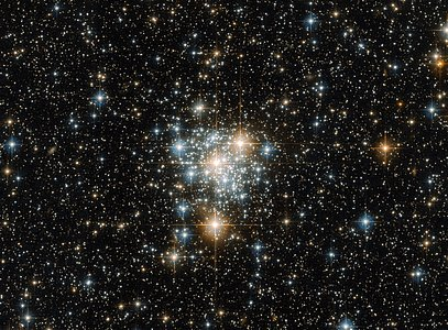The Toucan and the cluster