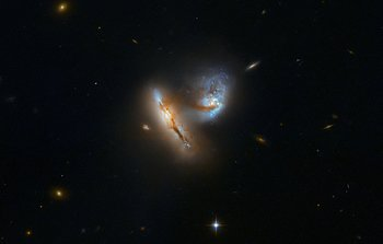 Picture of the Week | ESA/Hubble