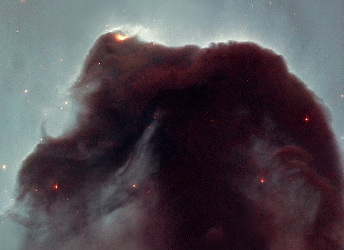 Eleven years in orbit: Hubble observes the popular Horsehead nebula