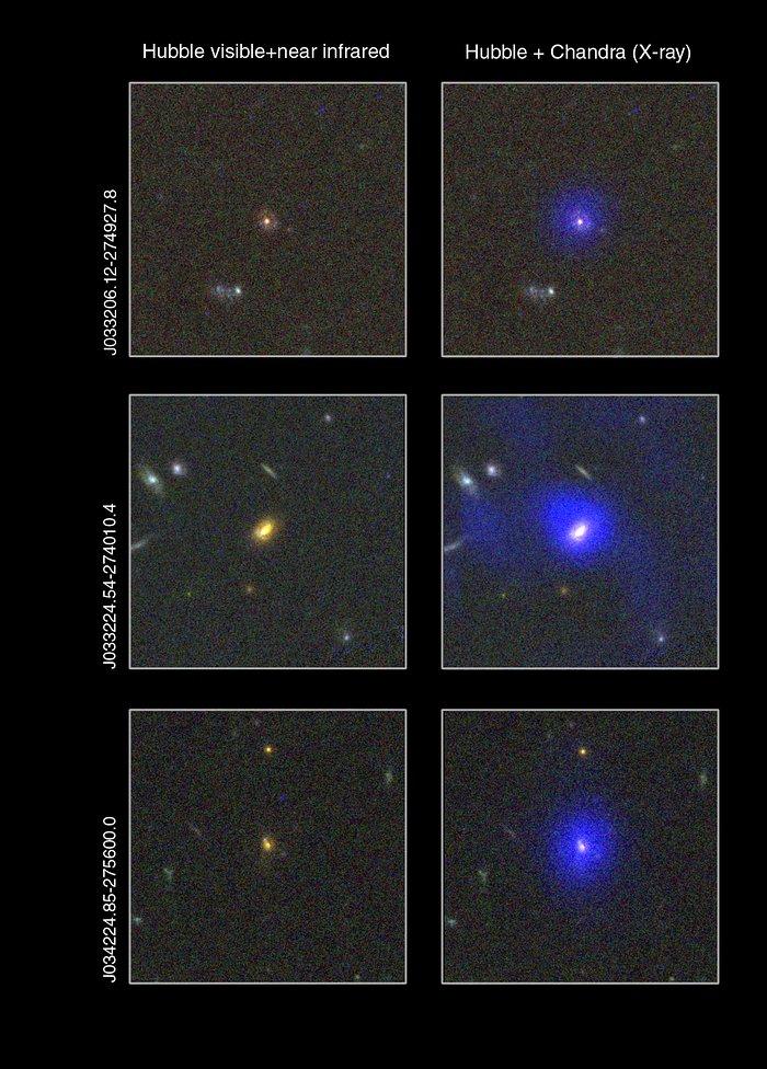 Dust-enshrouded supermassive black holes