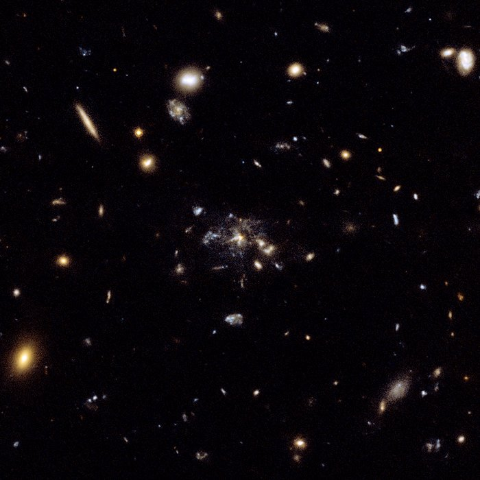Flies in a spider's web: Galaxy caught in the making