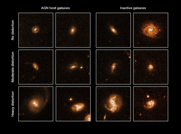 Selected galaxies from the COSMOS survey