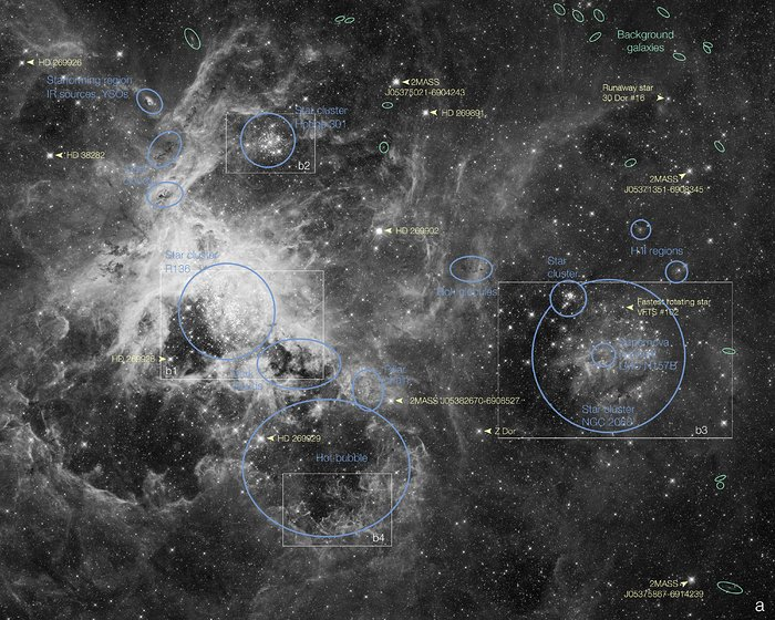 Labelled view of the Tarantula Nebula