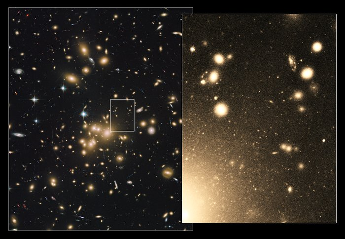 Globular clusters within Abell 1689