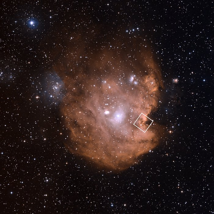 Wide field image of NGC 2174 (ground-based view)