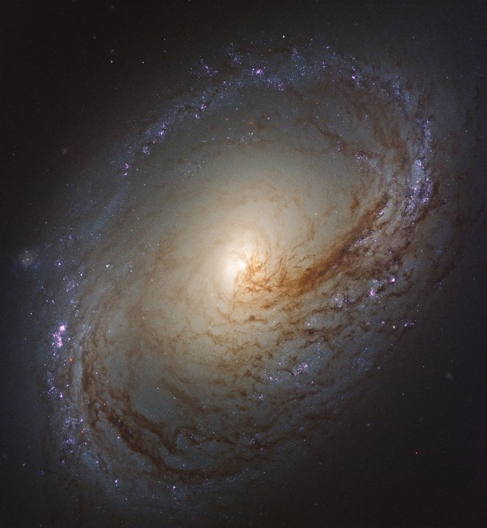 Wave of star formation in Messier 96