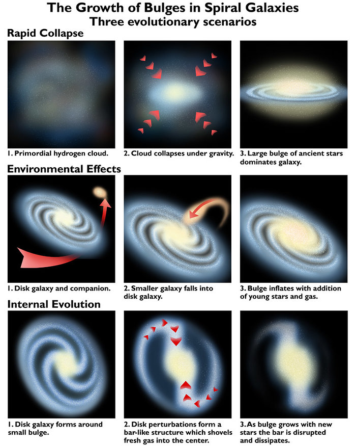 The growth of bulges in spiral galaxies