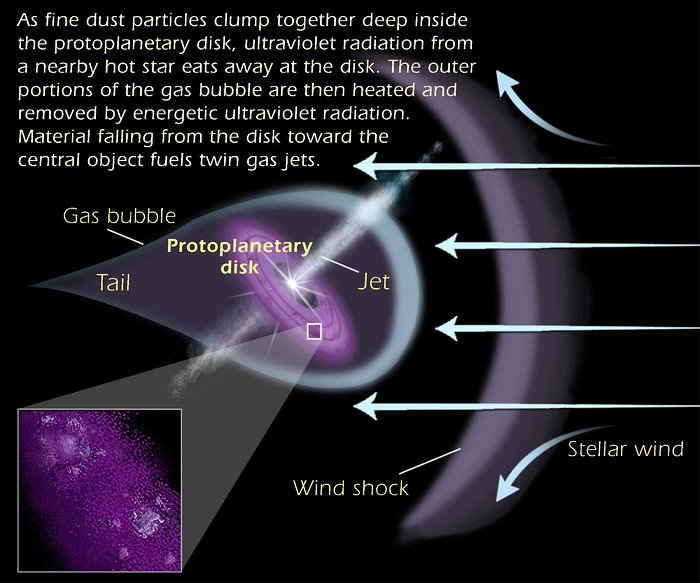 Anatomy of a protoplanetary disk