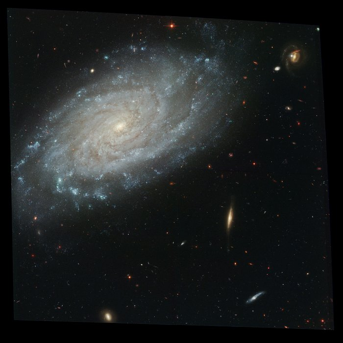 Full ACS Image of NGC 3370