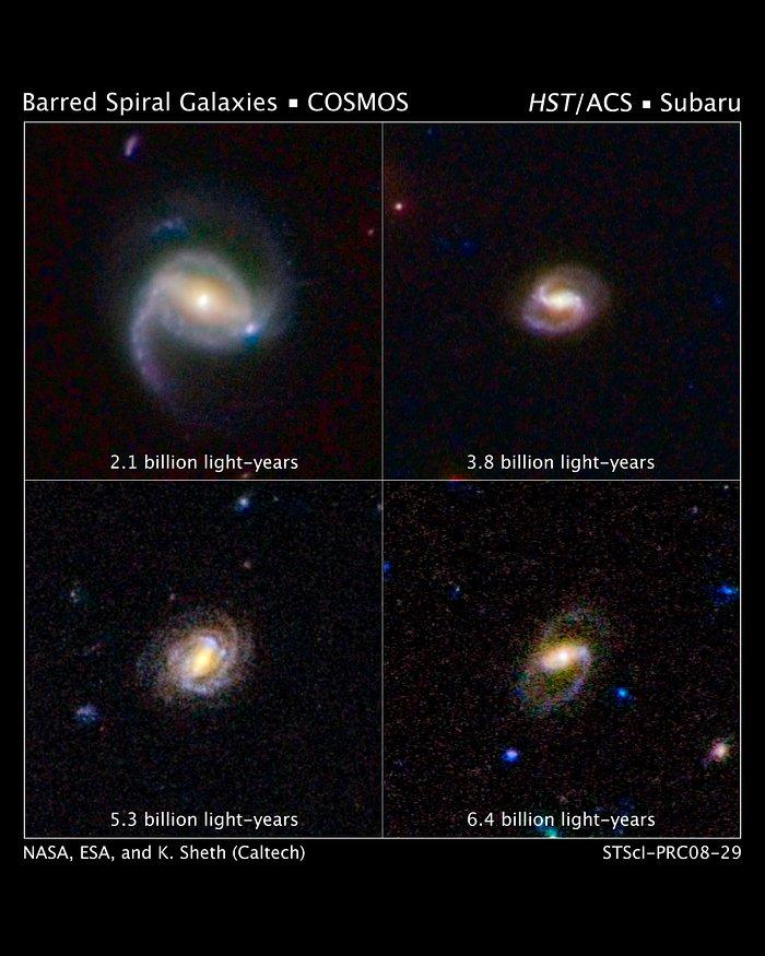 Hubble Surveys Barred Spiral Galaxies