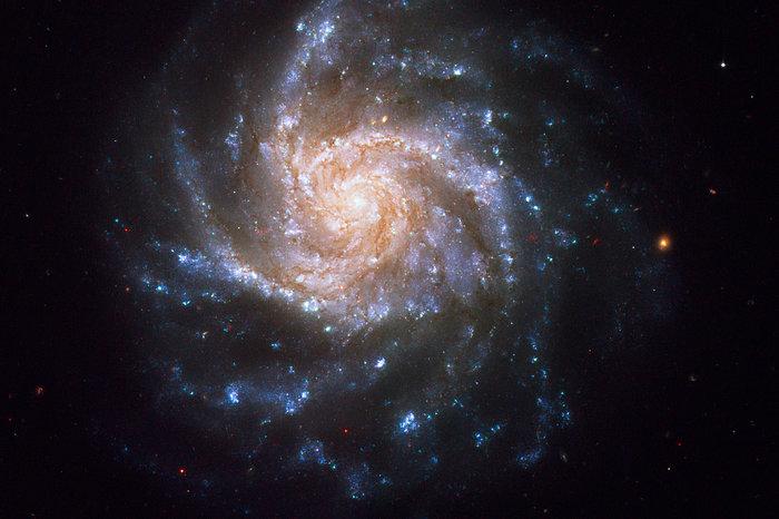 Spiral galaxy NGC 1376