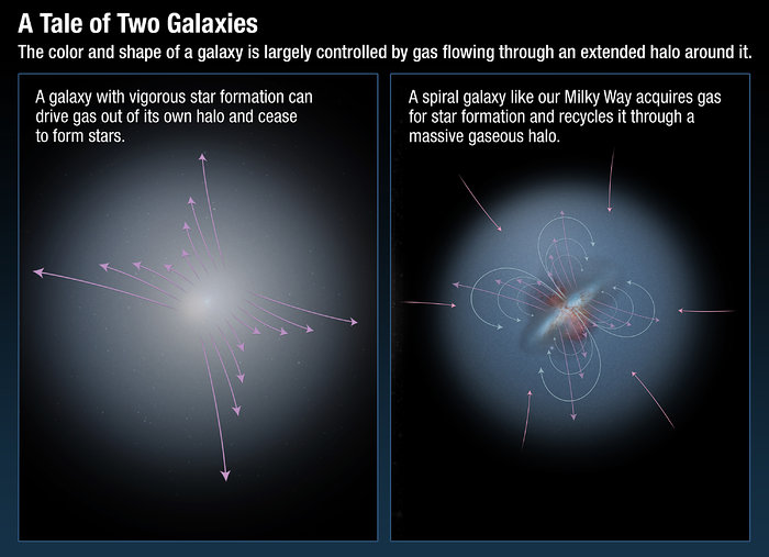 A tale of two galaxies